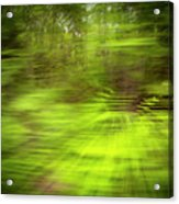 Enchanted Forest 4 Acrylic Print