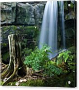 Enchanted Waterfall Acrylic Print