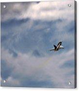 Eurofighter Typhoon Acrylic Print