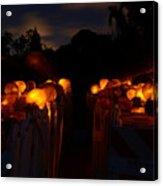 Evening Lights Acrylic Print