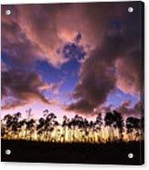 Everglades Sunset Acrylic Print