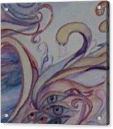 Eye Of The Swan Acrylic Print