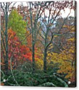 Fall in the NC Mountains Acrylic Print