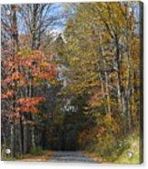 Fall Lane Acrylic Print