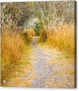 Fall Pathway 3 Acrylic Print
