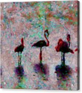 Flamingos Family Acrylic Print