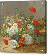 Flower Study Acrylic Print