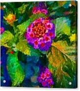 Flowers Confusion Acrylic Print