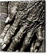 Old Hands Acrylic Print