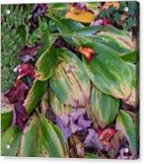 Cold Snap Acrylic Print
