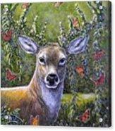 Forest Monarch Acrylic Print