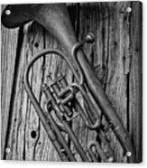 Forgotten Tuba Acrylic Print