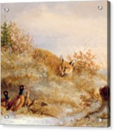 Fox And Pheasants In Winter Acrylic Print by Anonymous