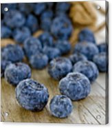 Fresh Blueberries Acrylic Print