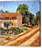 Fresh Cut Hay Provence Acrylic Print