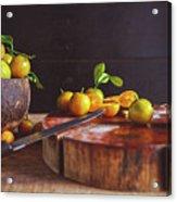 Fresh Kumquat Fruits Acrylic Print