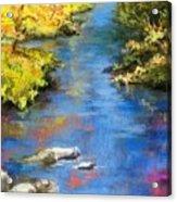 From The Bridge Acrylic Print