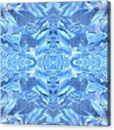 Frost Feathers Acrylic Print