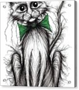 Fuzzy Cat Acrylic Print