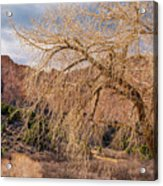 Garden Of The Gods Entrance Acrylic Print