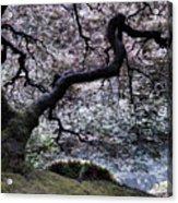 Garden View In Blue Acrylic Print
