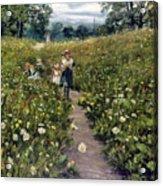 Gathering Wild Flowers Acrylic Print
