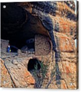 Gila Cliff Dwellings National Monument Acrylic Print