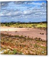 Gila River Acrylic Print