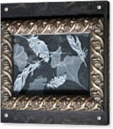 Ginko Leaves And Feathers Acrylic Print
