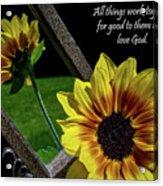 God's Creation Acrylic Print