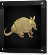 Gold Armadillo On Black Canvas Acrylic Print
