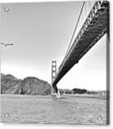 Golden Gate Bridge Acrylic Print by John Scharle