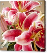 Graceful Lily Series 13 Acrylic Print