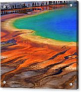 Grand Prismatic Spring Yellowstone National Park Tourists Viewin Acrylic Print