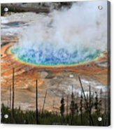 Grand Prismatic Springs In Yellowstone National Park Acrylic Print