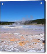 Great Fountain Geyser In Yellowstone National Park Acrylic Print