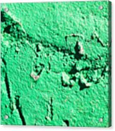 Green Background Acrylic Print