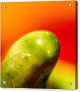 Green Red Liquid Clay Acrylic Print