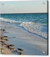 Gulf Of Mexico Beach Acrylic Print by Steven Scott