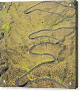 Haleakala Highway Acrylic Print