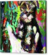 Harley In Hand Acrylic Print