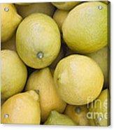 Harvested Lemons Acrylic Print