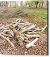 Heap Of Cut Wood Acrylic Print