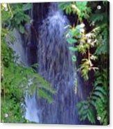 Hidden Waterfall Acrylic Print