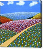 Hills Of Flowers Acrylic Print