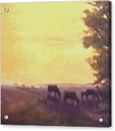 Hillside Silhouettes Acrylic Print