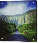 Ho'omaluhia Botanical Garden Acrylic Print