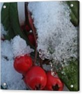 Ice Berries Acrylic Print