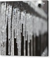 Icicles At Attention Acrylic Print