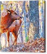In The Wild Acrylic Print